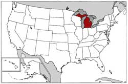 US Map Michigan